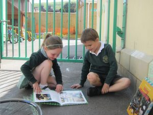 Outdoor learning (2)