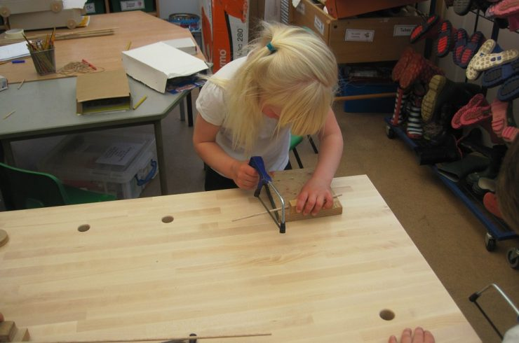 Learning to use tools in Reception